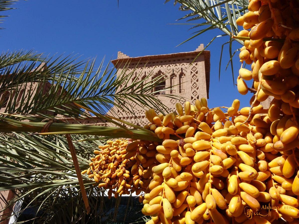 Kostenlose Dating-Seiten in Marokko